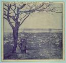 Vue prise du Mont Royal [image fixe]